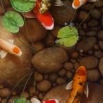 3D Koi Fish Pond